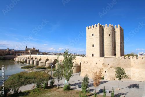 Tour De La Calahorra Et Pont Romain Cordoue Espagne