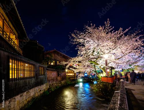 Papiers peints Kyoto Sakura in Kyoto