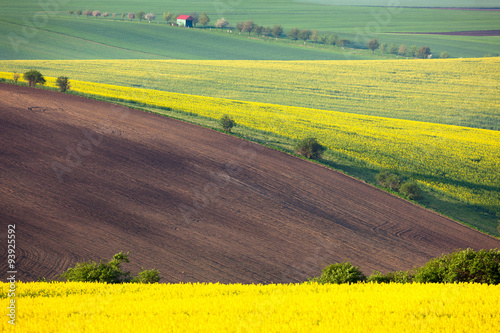 Poster Jaune Idyllic colorful fields landscape - countryside hills background