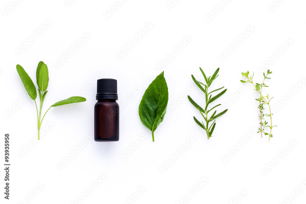 Fototapety, obrazy: Bottle of essential oil with herb holy basil leaf, rosemary,oreg