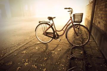 Fototapeta na wymiar Bike in autumn