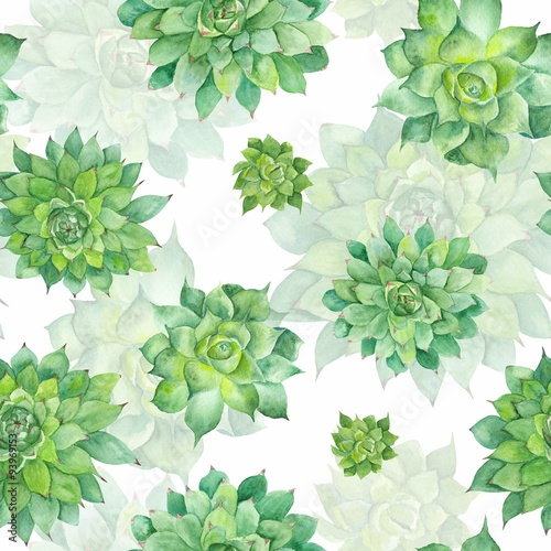 Watercolor Succulent Pattern on White Background
