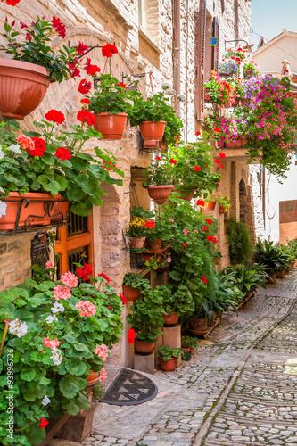 pelna-kwiatu-ganeczek-w-miasteczku-w-wlochy-umbria