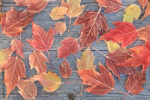 Листья на деревянном столе. Фон Canvas Print