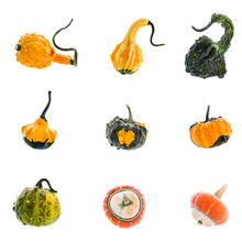 Set Of Nine Diverse Colorful Pumpkins On White Background
