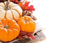 Pumpkin Still Life Isolated On...