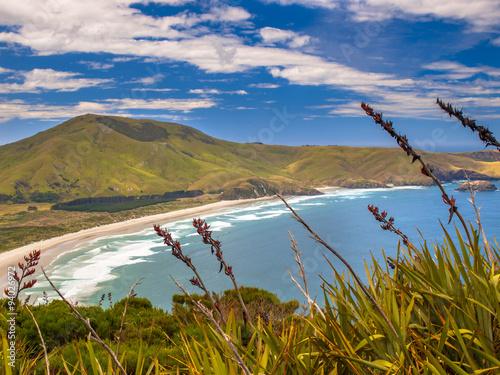 Photo  Coastal view Otago