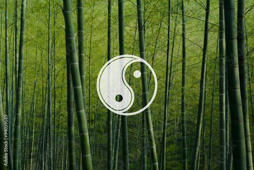 Fotografie, Obraz  Yin Yang Balance Contrast Opposite Religion Culture Concept