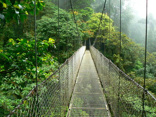 Obraz na Plexi Walking on a bridge in the jungle