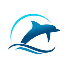 Fototapeta Dolphin Marine Jump