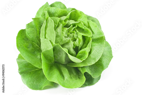 Fototapeta Fresh lettuce isolated on white obraz