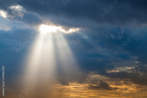 Obraz sun ray light through down - fototapety do salonu