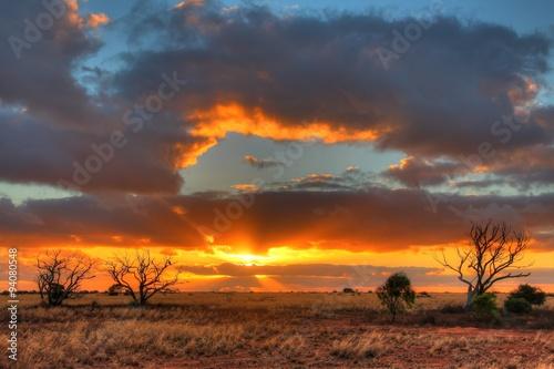 fototapeta na lodówkę Nullarbor Plain, Australia