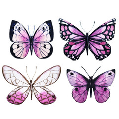 Watercolor butterflies vector