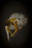 sukienka baleriny pointe - 94082730
