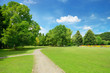 Leinwandbild Motiv Beautiful meadow in the park