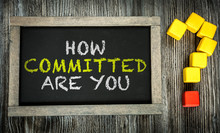 How Committed Are You? Written...
