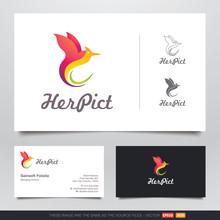 Colorful Dancing Bird Logo And...