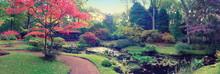 Autumn  In Japanese Park, Panorama