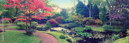Cadres-photo bureau Olive autumn in Japanese park, panorama