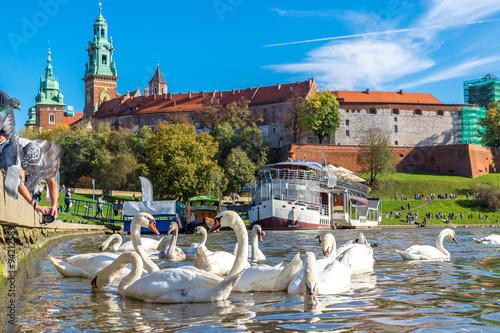 Poster Cracovie Wawel castle in Krakow