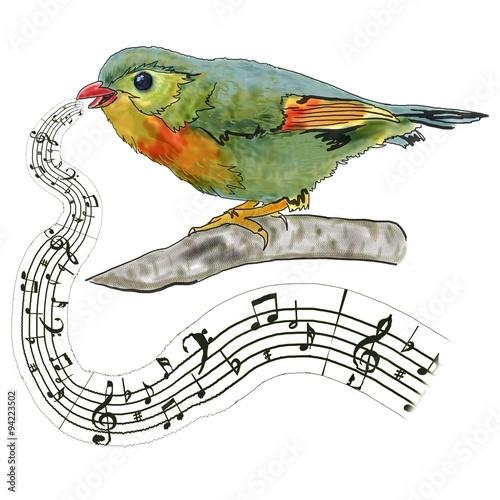 ptak-na-galezi-spiewa-piosenke-notatki