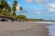 Brazilian Beaches-Pontal do Coruripe, Alagoas
