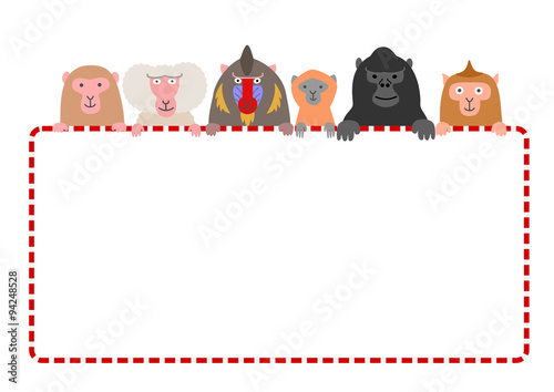 Photo monkies with red and white frame card, white background