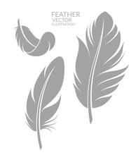 Feather. Set