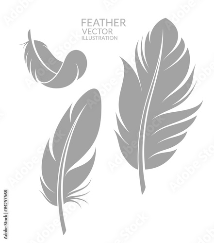 Feather. Set Wall mural