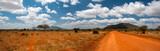 Fototapeta Sawanna - Landscape of Tsavo East, Kenya