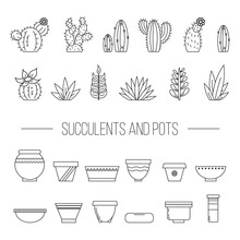 Set Of Succulent Plants, Cactu...