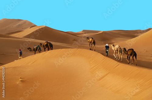 fototapeta na lodówkę Caravan in desert