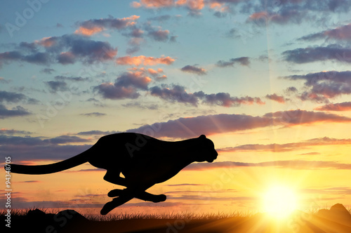 Photo Running cheetah silhouette