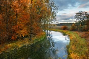Fototapeta Drzewa Elk River in autumn. Masuria, Poland.