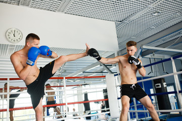 FototapetaStrong boxer and opponent during a box fight in ring