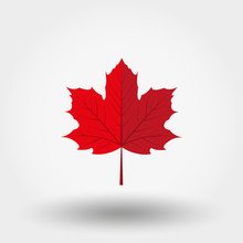 Red Maple Leaf Icon.