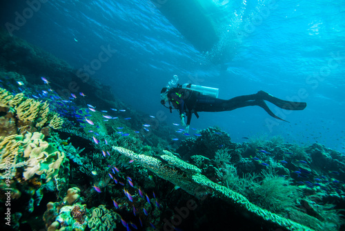 Keuken foto achterwand Duiken scuba diving diver woman sea underwater coral indonesia bali girl
