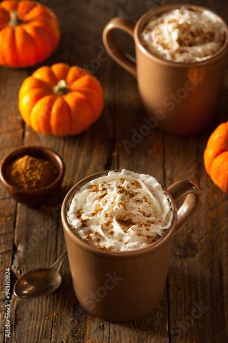 Fotografie, Obraz  Homemade Pumpkin Spice Latte
