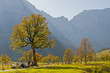 canvas print picture - Goldener Herbst im Karwendel