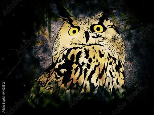 Photo sur Toile Croquis dessinés à la main des animaux Owl in Night
