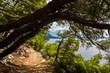 Landschaft Makarska, Dalmatien, Kroatien J
