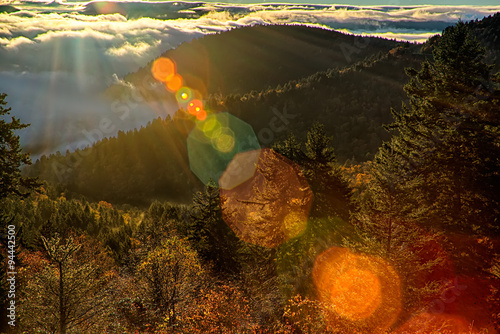 Fotografering  autumng season in the smoky mountains