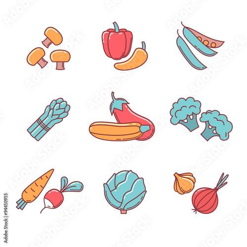 Fotografie, Obraz  Vegetable icons thin line set