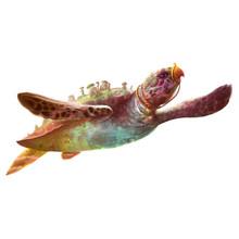 Illustration: The Flying Turtl...