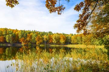 Fototapeta Wschód / zachód słońca Wunderschöne Herbstlandschaft