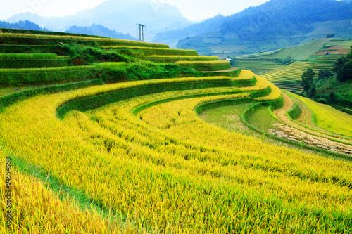 Foto  Rice fields on terraced of Mu Cang Chai, YenBai, Vietnam