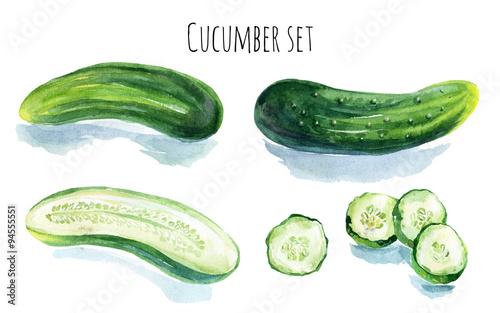 Photo  Watercolor cucumber