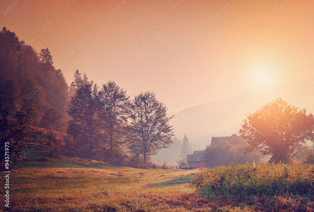 Fototapeta Summer landscape with a mountain village in the mist