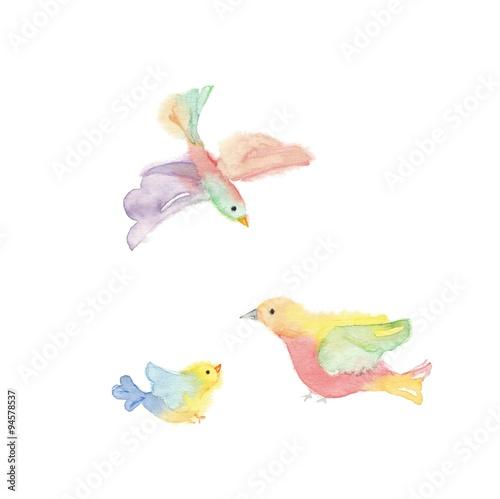 パステルカラーの鳥